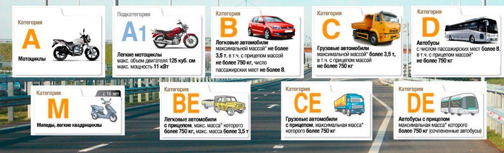 Как получить водительские права категории D