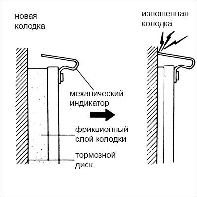 схема усика (скрипуна)